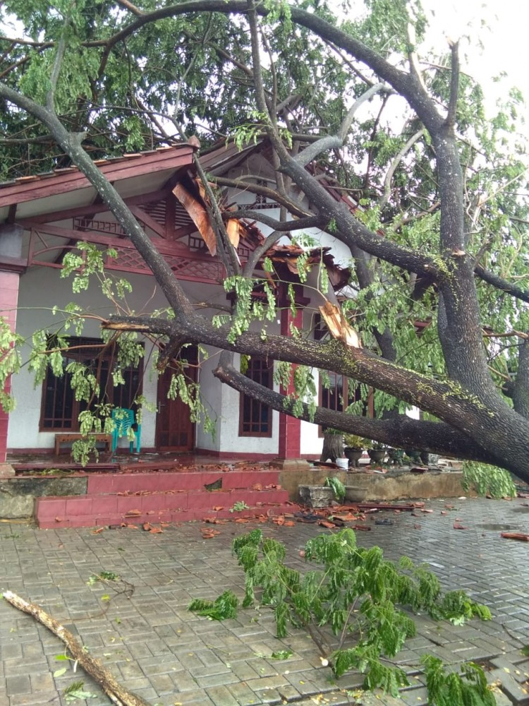 https://akzzsuefen.cloudimg.io/fit/300x180/c000000.fbgblur10.fbgopacity50/Angin Puting Beliung Menerjang Desa Daru di Kecamatan Jambe, Tangerang
